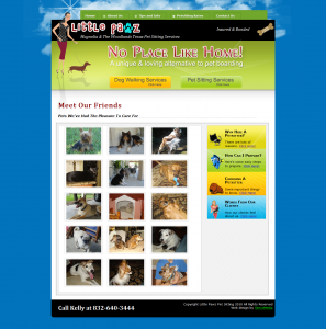 Little Pawz Pet Sitters web design by Brian Sniff
